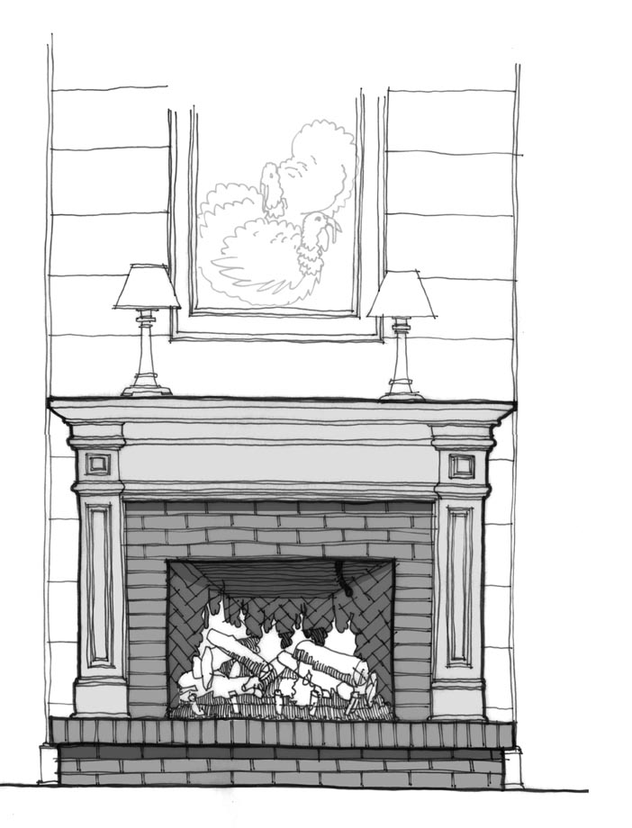 proposed fireplace changes